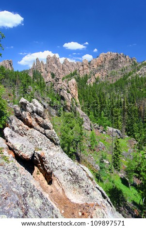 Black Hills of South Dakota is scattered with rock formations referred to as the Needles - stock photo
