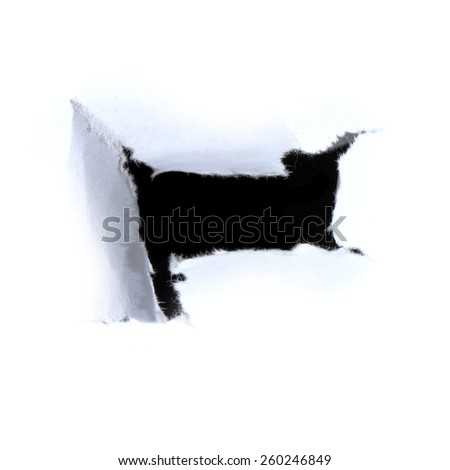 Black hole in white paper. - stock photo