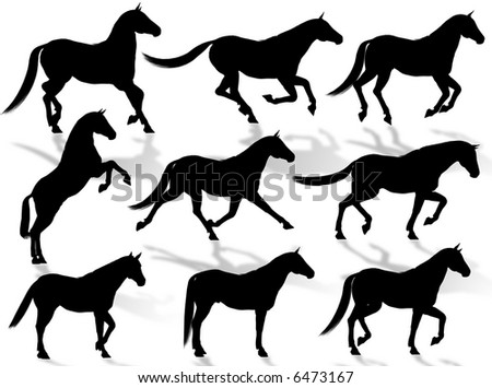 Black horse silhouettes in different poses and attitudes