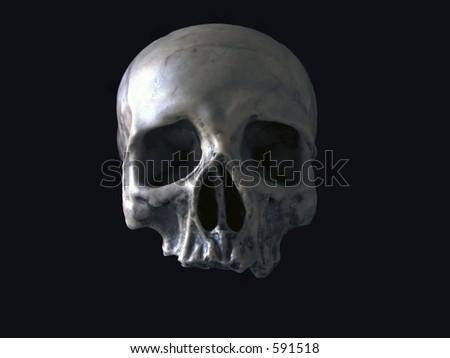 black isolated skull - stock photo