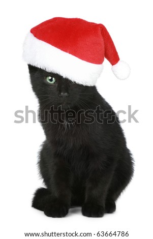 Black kitten in a Christmas hat on a white background - stock photo