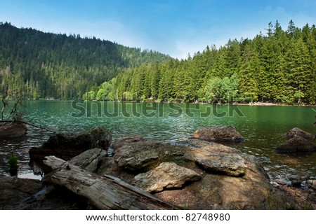 Black Lake, the Largest natural lake in the Czech Republic is located in the Sumava mountains - stock photo