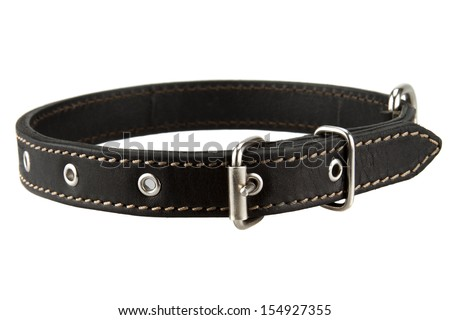 black leather dog collar - stock photo