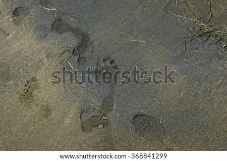 black mark - stock photo