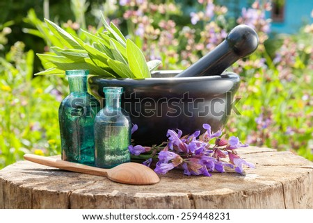 Black mortar with sage herbs, glass bottles of essential oil outdoors. Herbal medicine. - stock photo
