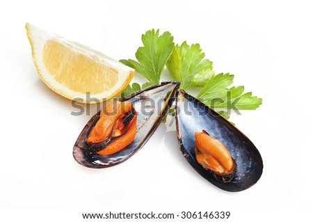 black mussels close up on white background - stock photo