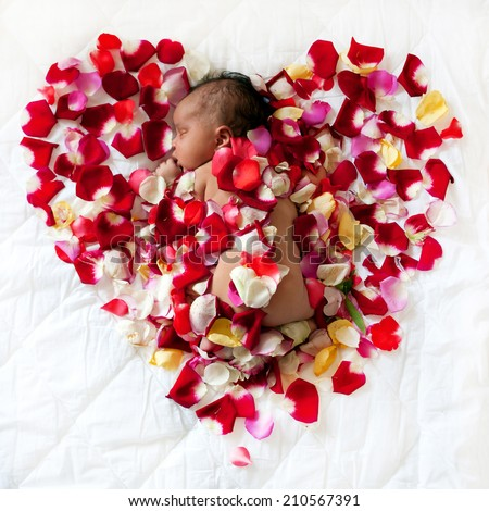 Black newborn baby sleeping in surrounded by rose petals forming a heart. Love concept - stock photo