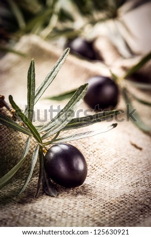 Black olive with leaves. Organic food - stock photo