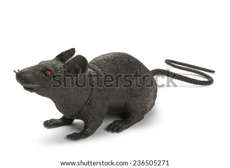 Black Plastic Toy Rat Isolated on a White Background. - stock photo