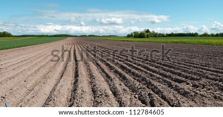 black ploughed field under blue cloudy sky - stock photo