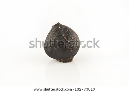 Black Radish Isolated - stock photo