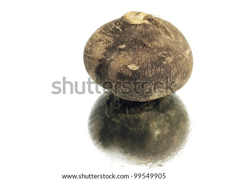 black radish on a white background with water drops - stock photo