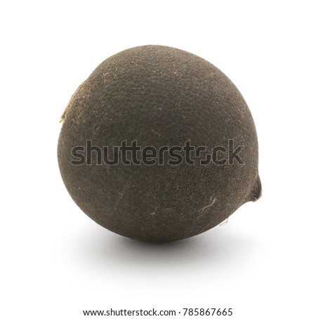 Black radish one fresh bulb isolated on white background