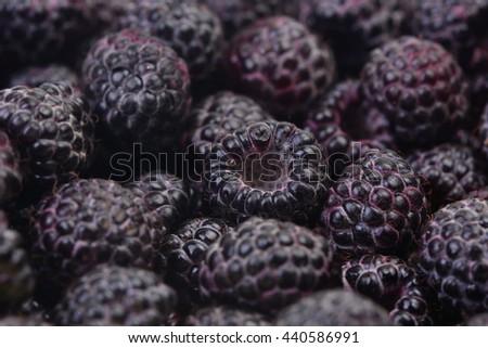 Black raspberry  - stock photo