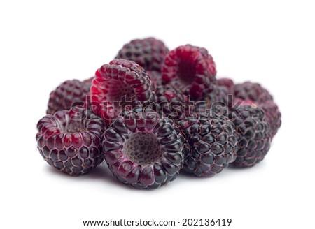 Black raspberry Cumberland isolated on white background - stock photo