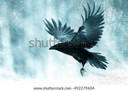 Black Raven Flying Moo...
