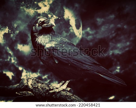 Black raven in moonlight perched on tree. Scary, creepy, gothic setting. Cloudy night with full moon. Halloween - stock photo