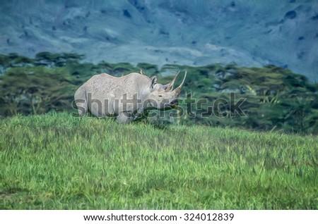 Black rhinoceroses in Ngorongoro Crater,photo art - stock photo