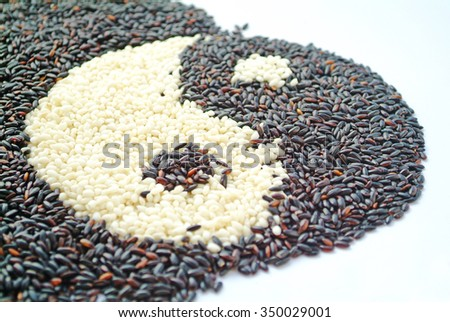 Black rice and white rice in shape of Chinese  - stock photo