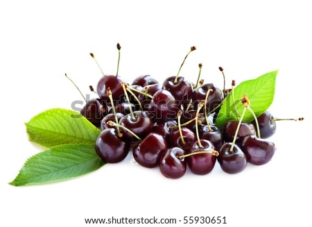 Black ripe cherries with leaves on a white background. - stock photo