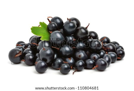 Black ripe currants isolated on the white background - stock photo