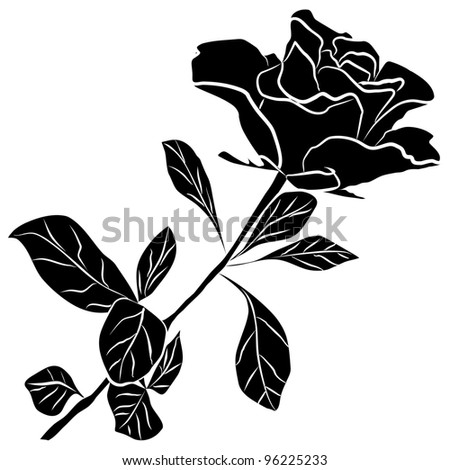 black rose silhouette - freehand on a white background - stock photo