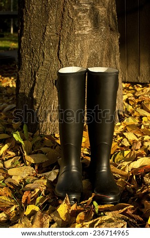 Black rubber boots on the autumn park - stock photo