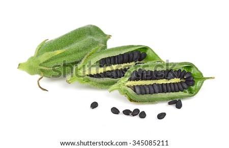 Black Sesame Seeds isolated on white background. - stock photo