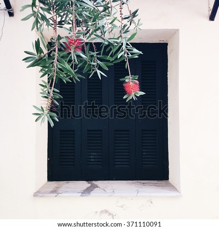 Black shutter with flowers - stock photo