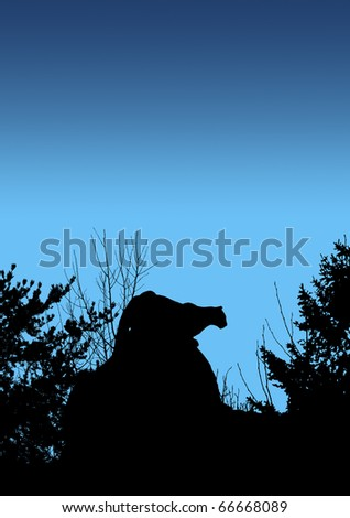 Black silhouette of cougar stalking prey from a big boulder rock on top of a mountain in the early morning or night. - stock photo