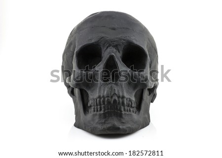 Black skull frontal view on white background. - stock photo