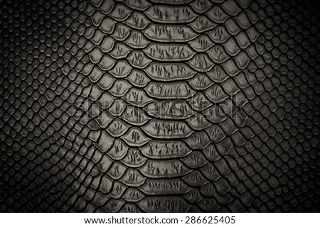 black snakeskin pattern texture background - stock photo