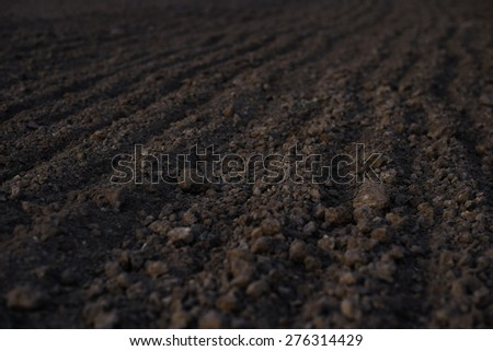 Black soil plowed field. Earth texture. Rustic background.