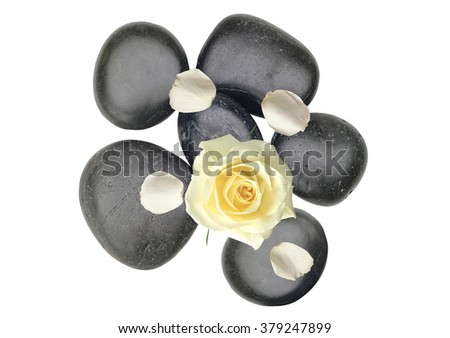 Black spa stones an white rose petals isolated on white background - stock photo