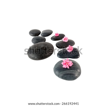 Black spa stones and pink flower isolated on white - stock photo