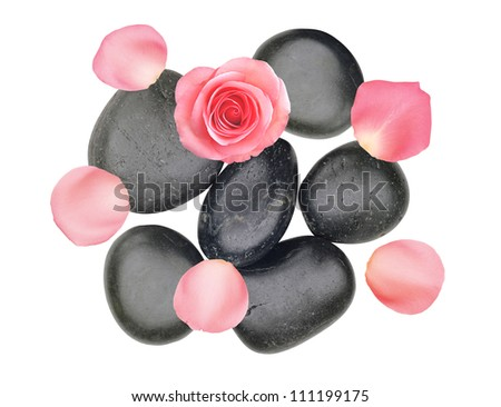 Black spa stones and pink rose with petals isolated on white background