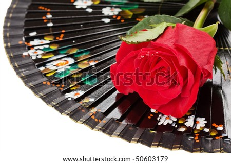 Black spanish fan and red rose with water droplets isolated on white background, with clipping path - stock photo