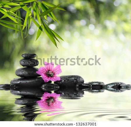 black stone and hibiscus with bamboo on the water - stock photo