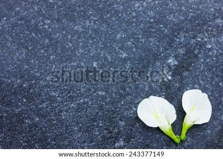 Black stone texture surface, Blue stone texture surface, flower on stone texture - stock photo