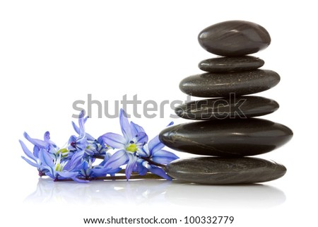 black stones and  blue  flowers  on white background - stock photo
