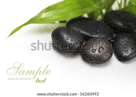 black stones and green leaf - stock photo