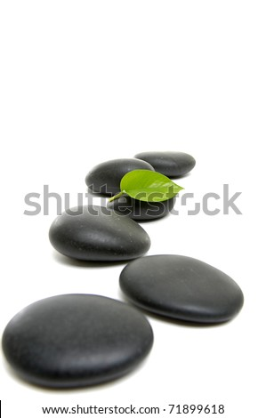 black stones and spring green leaves - stock photo