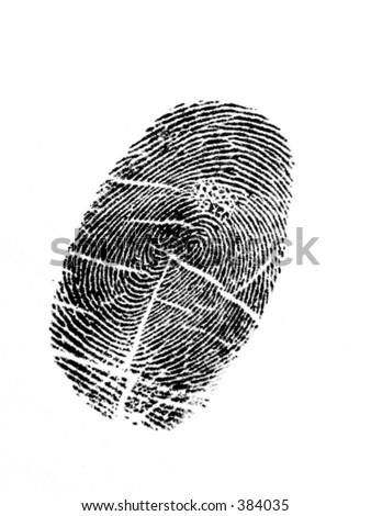 Black thumbprint with white background - stock photo