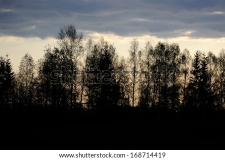 Black trees and dark clouds at dusk - stock photo