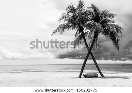 Black & White view of Beautiful beach with palms, Thailand - stock photo