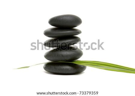 black zen pebbles and a young green leaf - stock photo