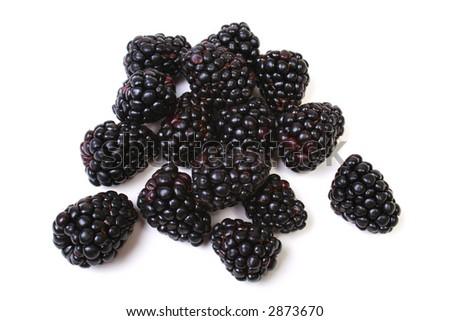 Blackberries isolated on white. - stock photo