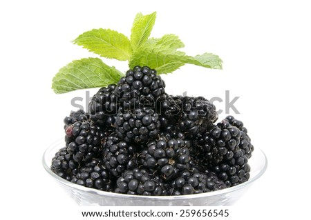 blackberries on a white background in the restaurant - stock photo