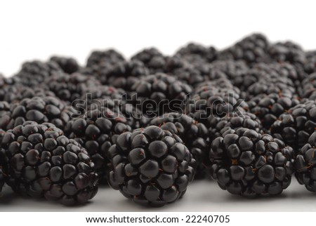 Blackberries very close studio isolated on white background