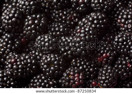 Blackberry background